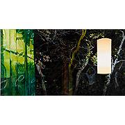 Lampenschirm vor Vorhang und Pflanzen